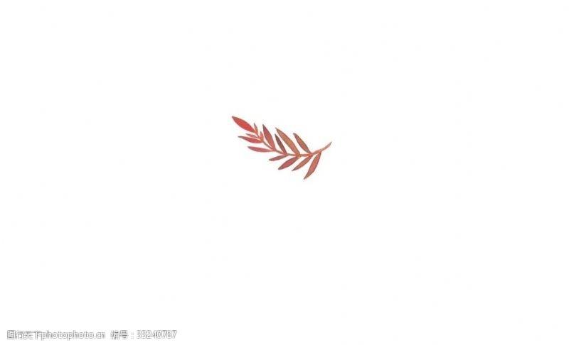 红色树叶插图