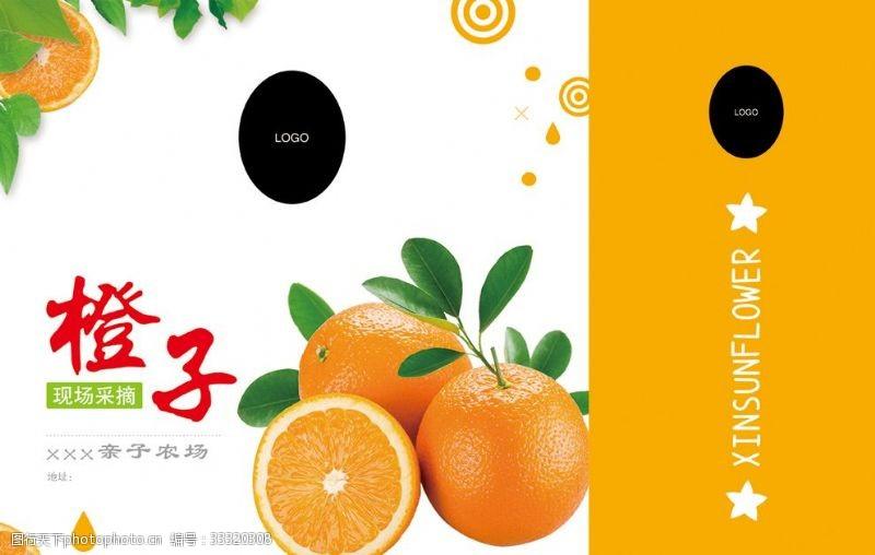 橙子手提袋