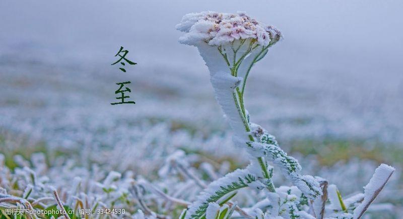 冬至24節氣