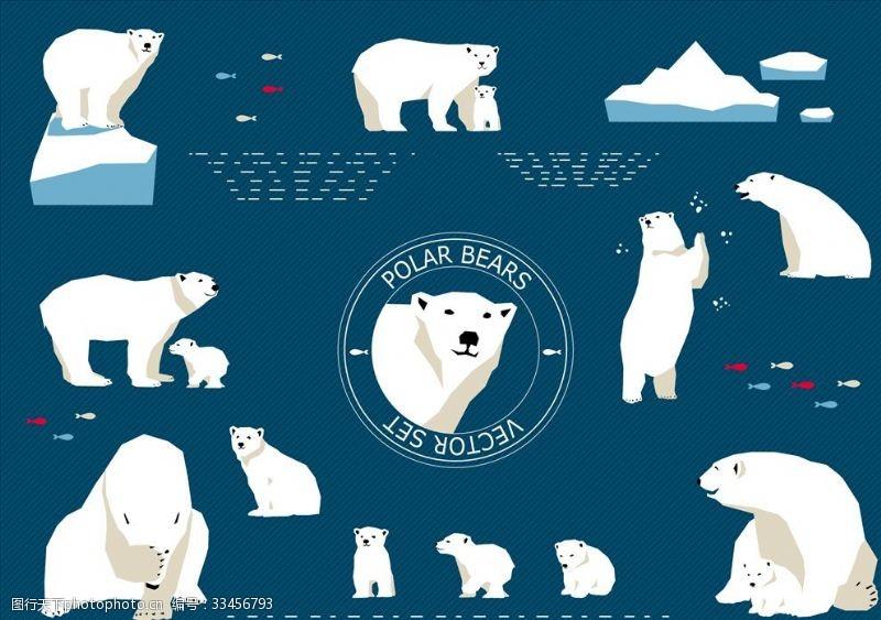 保護區北極熊
