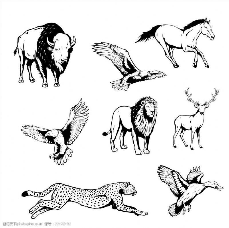 信封手繪動物