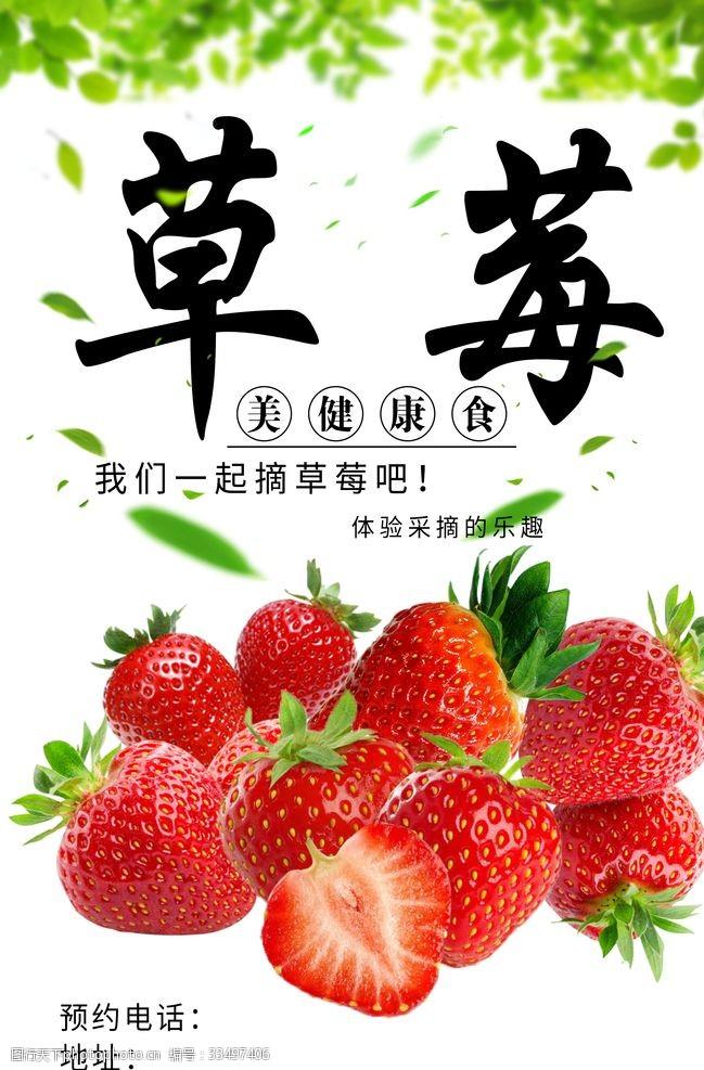农家采摘草莓海报