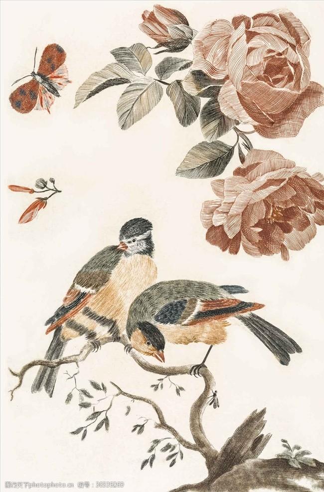 小鸟插图小鸟花朵绘画