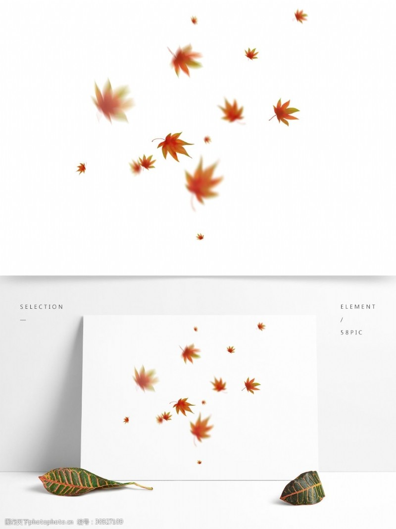 飘落的红叶漂浮的枫叶秋天飘落的红枫叶手绘枫叶