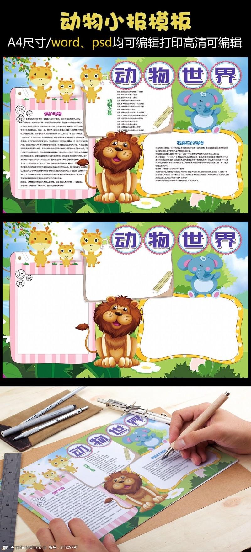花边设计图保护野生动物动物小报模板