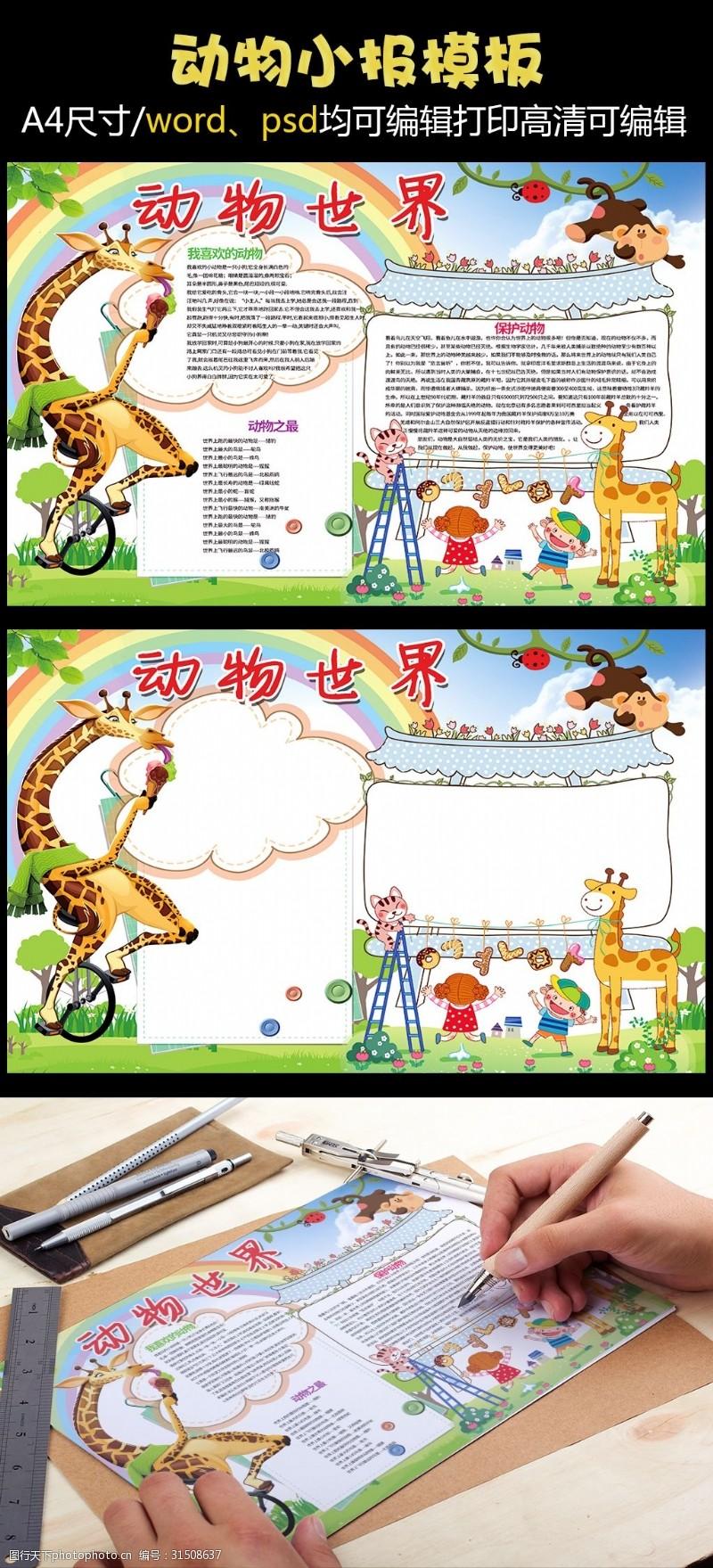 花边设计图动物小报动物世界保护动物小报模板