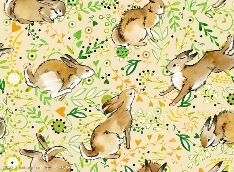 兔子底纹动物兔子