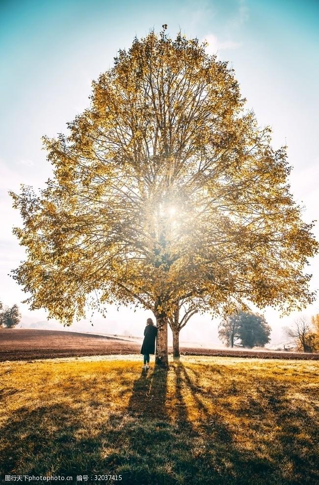 色彩天空秋天