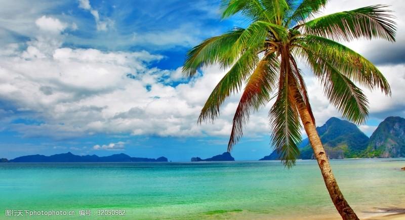 蓝天白云大海图片美丽的夏日椰树