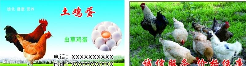 土鸡蛋名片简笔画