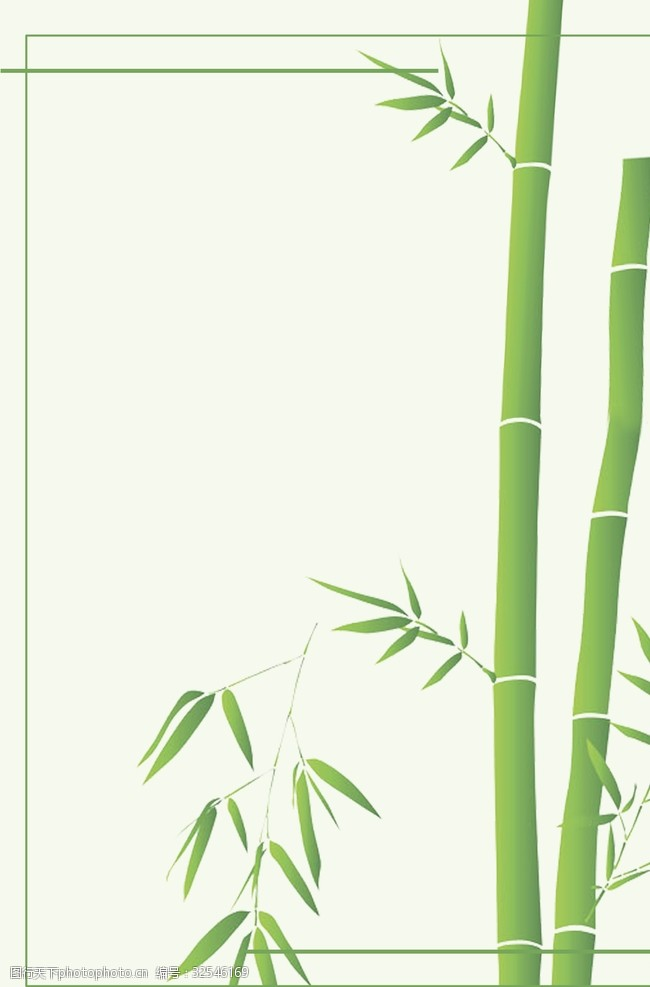 竹子的图案竹子