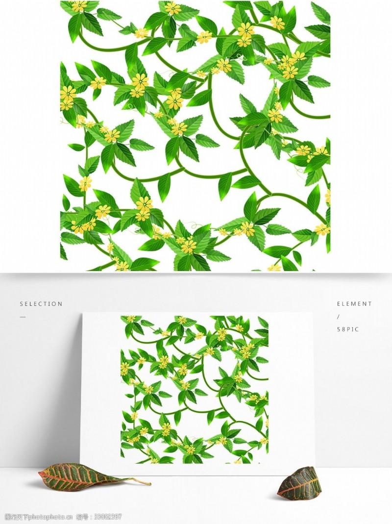常青藤1夏天常青藤植物花朵元素
