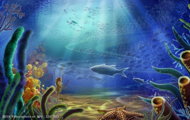 精美素材海底世界
